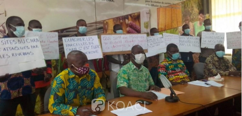 Côte d'Ivoire : Menace de destruction des sites de recherche, les syndicats du CNRA en grève de six jours