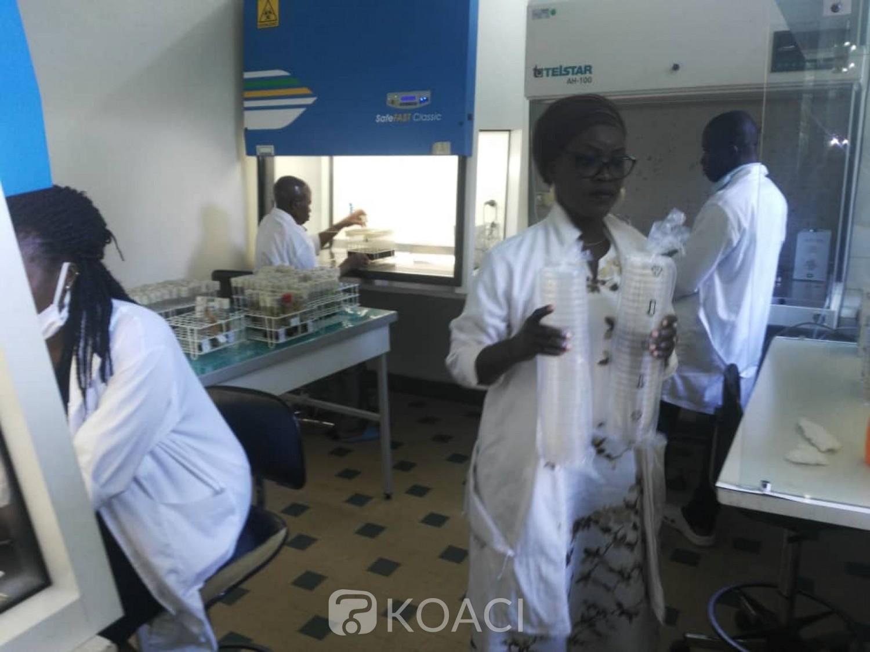 Côte d'Ivoire : CNRA, après les assurances de la tutelle de régler définitivement leurs préoccupations, les syndicats suspendent la grève et reprennent le service