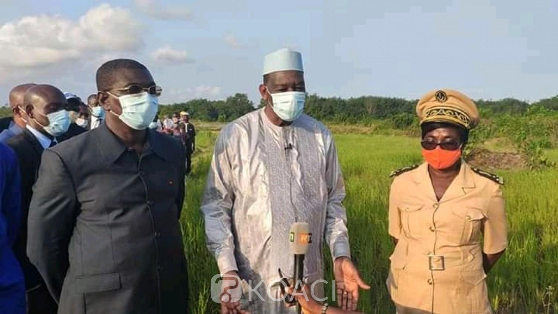 Côte d'Ivoire : Afin de rendre compte au président Ouattara, Gaoussou Touré s'imprègne des potentialités rizicoles du Bas-Sassandra