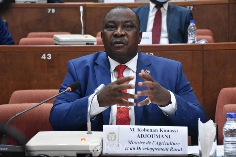Côte d'Ivoire : Adjoumani annonce le décaissement de 45 milliards de FCFA sous forme de subventions pour l'achat des 106.600 tonnes d'anarcades entre les mains des producteurs