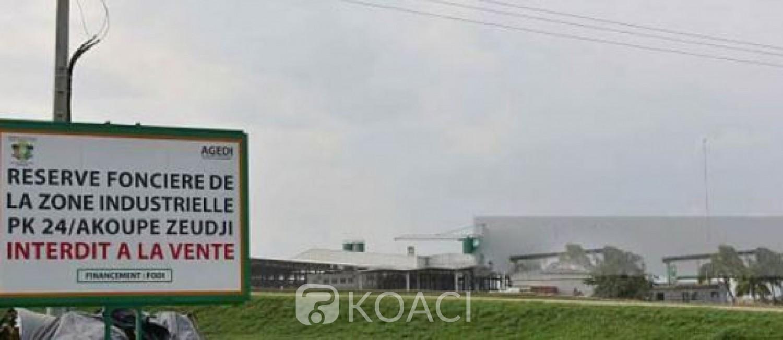 Côte d'Ivoire : Trois nouvelles  zones économiques industrielles vont être installées à Akoupé Zeudji, San Pedro et Ferké