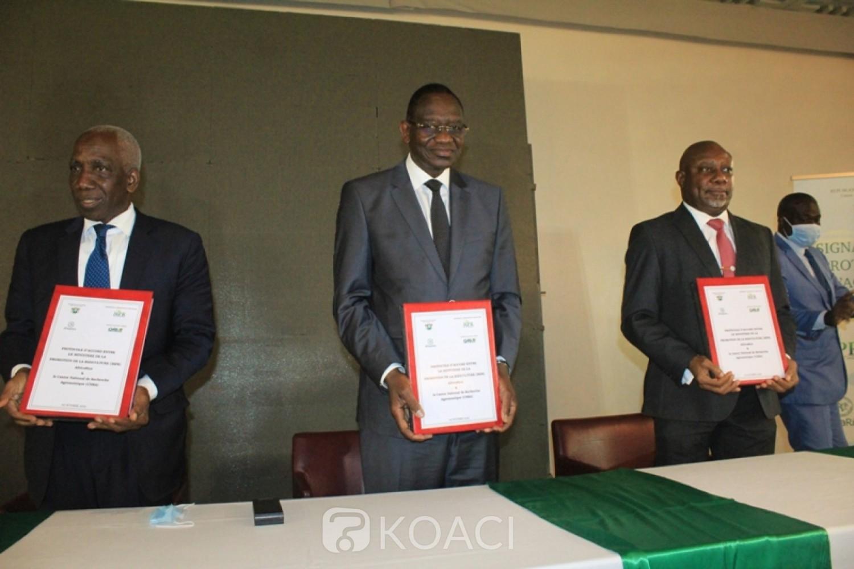 Côte d'Ivoire : Autosuffisance en riz, le gouvernement signe deux accords-cadres dans le cadre de l'amorce de la mise en œuvre de la SNDR 2020-2030 prévue en 2021