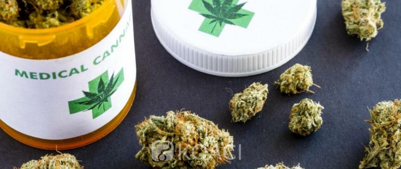 Rwanda : Feu vert du gouvernement pour la production du cannabis à usage thérapeutique