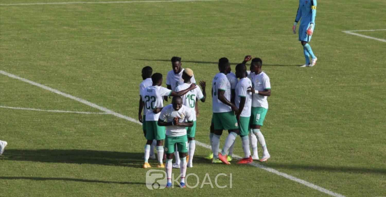 Sénégal : CAN 2022, Les lions de la Téranga première équipe qualifiée pour la Coupe d'Afrique des nations