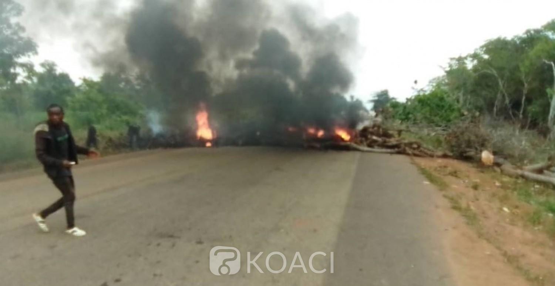 Côte d'Ivoire : Désobéissance civile, l'axe Bouaflé-Zuenoula obstrué par des troncs d'arbres