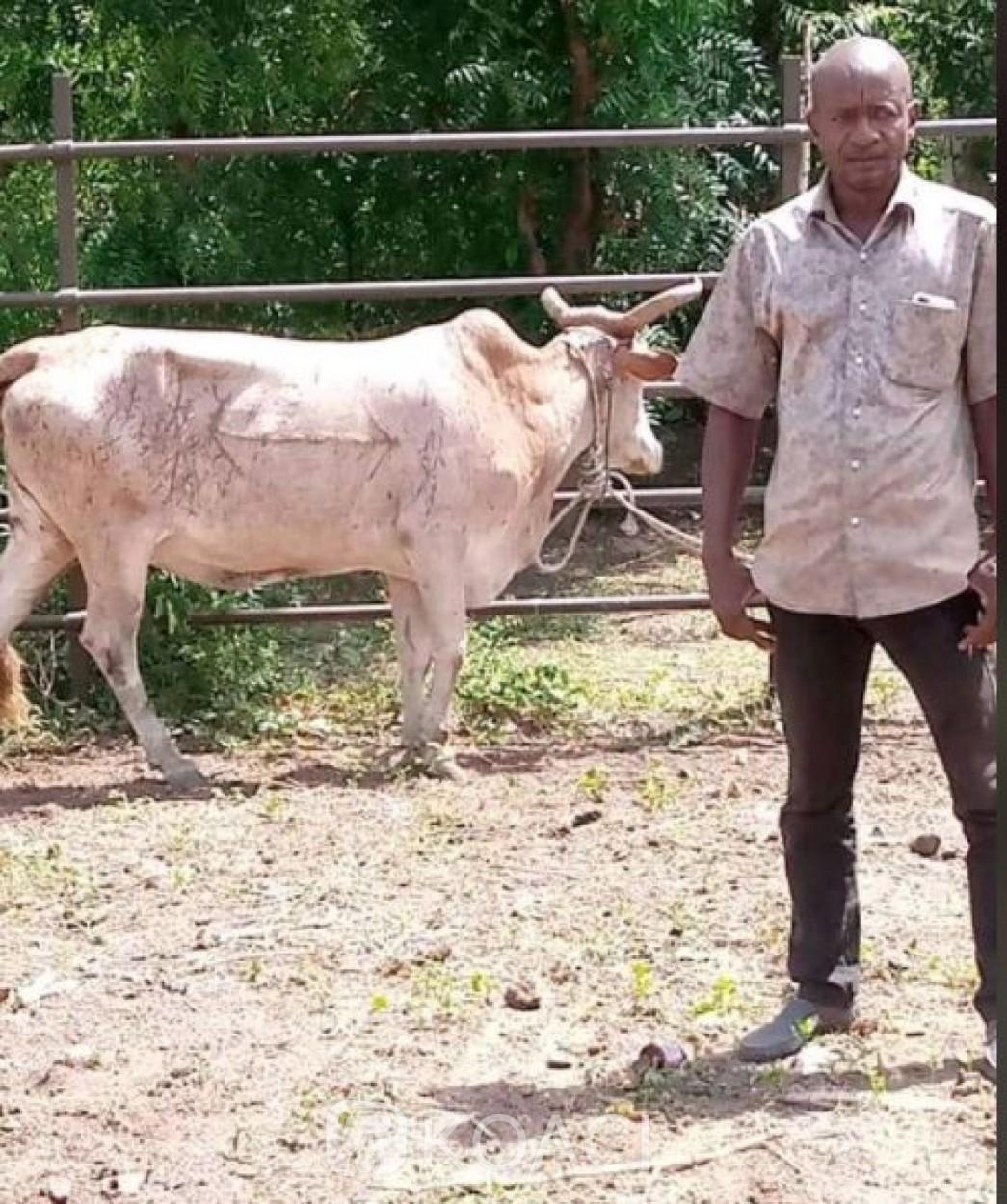 Côte d'Ivoire : Assassinat du président des éleveurs de la Bagoué, la thèse d'un règlement de compte brandit par ses proches