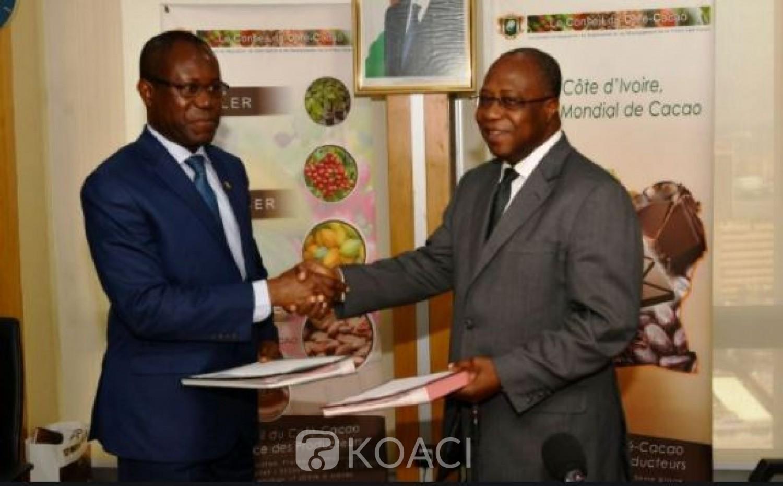 Côte d'Ivoire-Ghana : Abidjan et Accra annoncent la suspension de toute collaboration avec l'association des chocolatiers américains