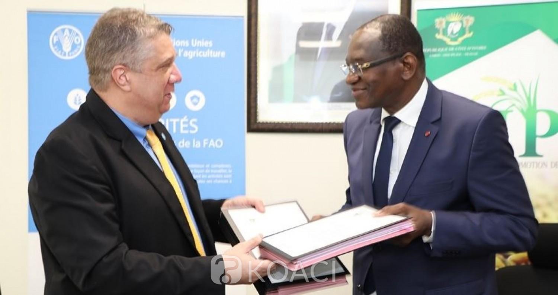 Côte d'Ivoire : Développement des chaînes de valeur du riz, le Gouvernement et la FAO signent une convention en vue d'améliorer la capacité locale