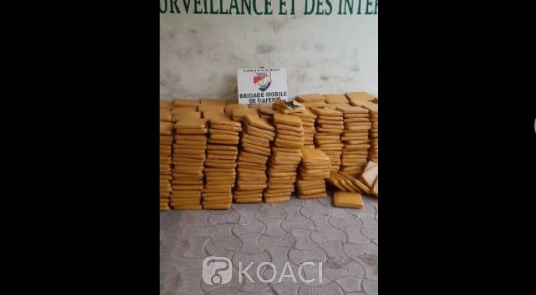 Côte d'Ivoire : Adiaké, découverte de plus d'une tonne de cannabis, dissimulée dans des palmes