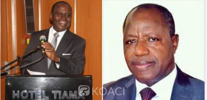 Côte d'Ivoire : PDCI-RDA, Noël  Akossi Bendjo et Daniel Gnagni nommés vice-présidents