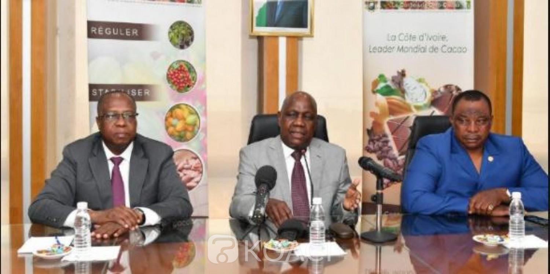 Côte d'Ivoire : Nouvelle grogne des producteurs à cause de la mévente du cacao, le Conseil et le Ministre Adjoumani interpellés