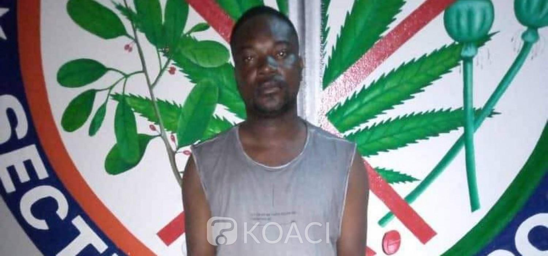 Côte d'Ivoire : Affaire saisie de cocaïne à Cocody, complicités au sein de la douane ?