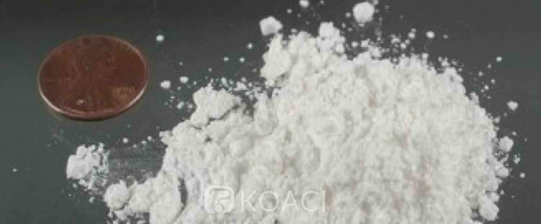Cameroun: Démantèlement d'un vaste réseau de trafiquants de cocaïne fournisseurs dans les écoles