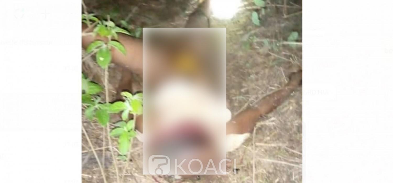 Côte d'Ivoire : Une femme découverte morte éventrée dans la broussaille à Ouaninou