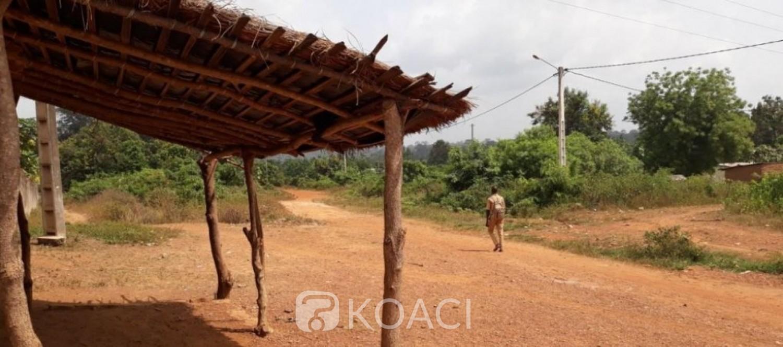 Côte d'Ivoire : Région du Moronou, une femme de 70 ans mortellement éventrée par un buffle