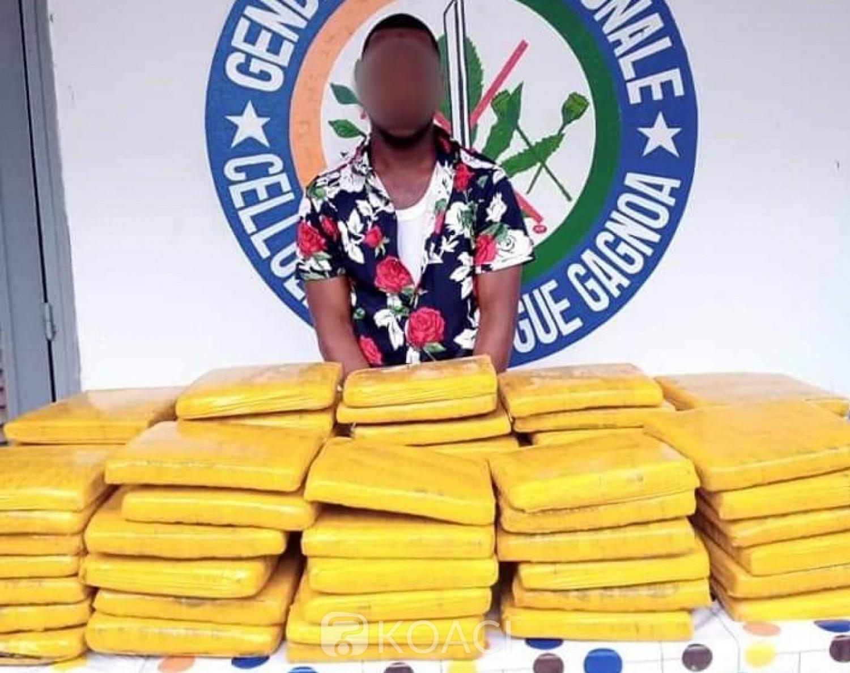 Côte d'Ivoire : Gagnoa, un enseignant interpellé avec 67,5 kilogrammes de drogue