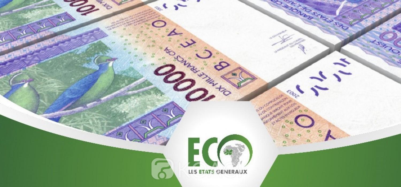 Togo : Les défis et états généraux de l'ECO se précisent sans Nathalie Yamb