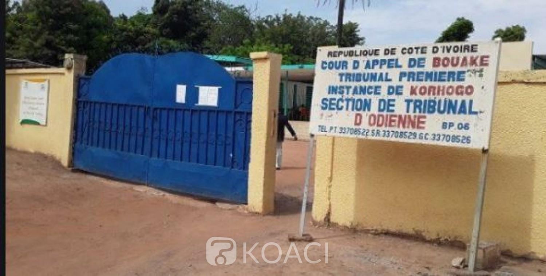 Côte d'Ivoire : Propos diffamatoires sur les réseaux sociaux, un individu mis aux arrêts à Odienné