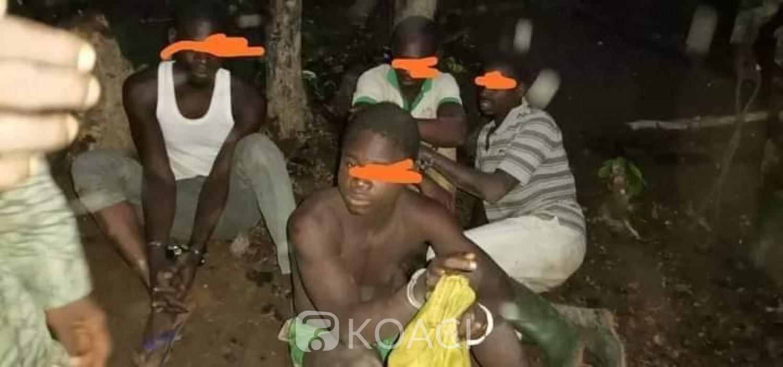 Côte d'Ivoire : Abengourou, les 9 clandestins appréhendés dans la forêt classée de Bossematié condamnés à un an et demi de prison