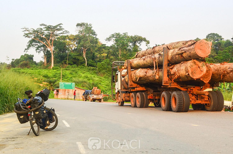 Côte d'Ivoire : Lakota, le chauffeur d'un grumier, perd le contrôle de son camion et l'engin fini sa course dans une habitation
