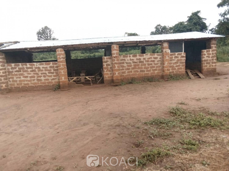 Côte d'Ivoire :    Malgré la construction de milliers de salles de classes, les élèves de l'EPP Michel Carrefour de Vavoua confinés dans des apatams de fortune et à même le sol