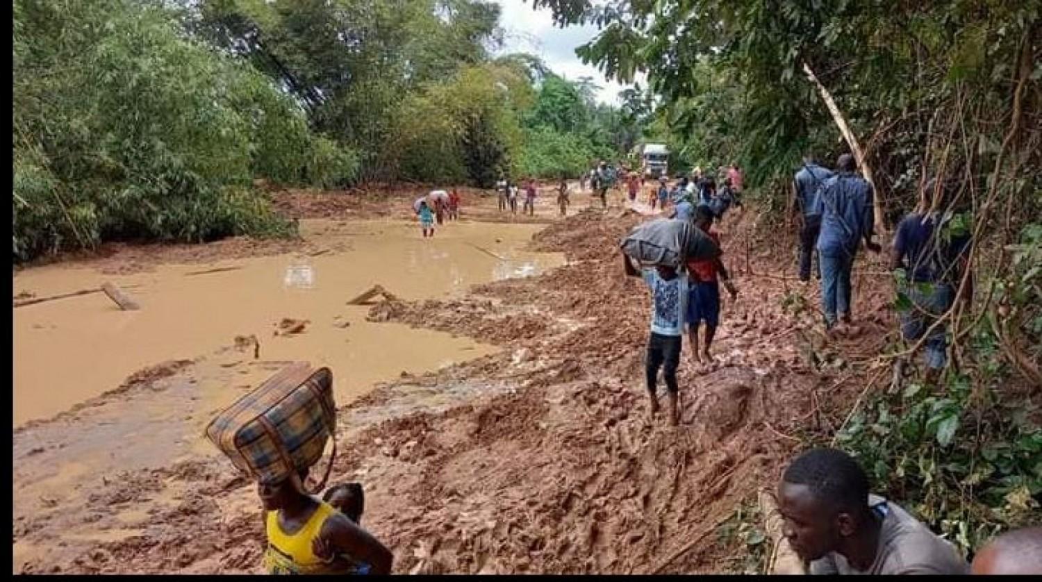 Côte d'Ivoire : Grande « oubliée » la zone de Taï, forte de ses richesses, enclavée et coupée du reste du Pays, dans l'antre du calvaire des populations