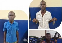 Côte d'Ivoire : Abobo, folle nuit, interpellation de 3 individus...