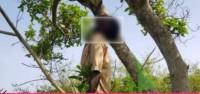Côte d'Ivoire : Gohitafla, examen du BEPC, pris avec un téléphone...