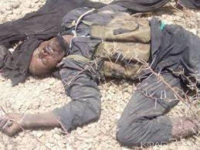 Niger:   287 membres de  Boko Haram abattus lors d'une opération de l'armée