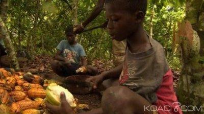 Côte d'Ivoire : Le cacao au centre de trafics et de travail d'enfants burkinabés, un documentaire censuré qui accable le pays