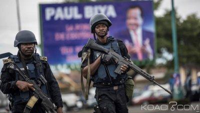 Cameroun : Au moins 20 séparatistes tués dans les combats au Nord-ouest