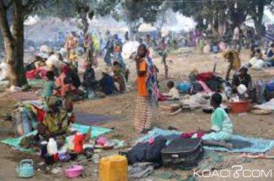 Cameroun : Au moins dix corps sans vie découverts dans l'Adamaoua