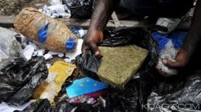 Côte d'Ivoire : Importante saisie de drogues dans le Gontougo (Nord-est), deux individus interpellés