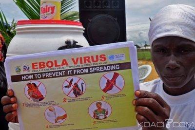 Liberia : Découverte du virus Ebola sur une chauve-souris à Nimba