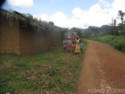 Côte d'Ivoire : Les habitants de la forêt classée de Tiapleu (Danané) déguerpis en février prochain