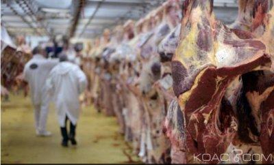 Côte d'Ivoire : 2,7 tonnes de viande avariées de provenance d'un abattoir  en Pologne, Abidjan rassure