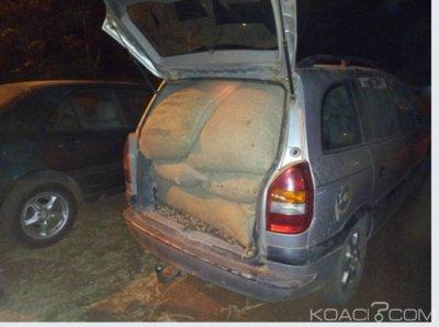 Côte d'Ivoire : Fuite des produits agricoles vers l'extérieur, un véhicule transportant 23 sacs de noix de cajou en direction du Ghana intercepté