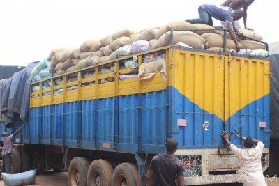 Côte d'Ivoire : Fuite du cacao vers les pays limitrophes, saisie de 80 tonnes à Abengourou lors de la campagne 2017-2018
