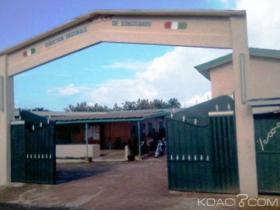 Côte d'Ivoire : Bongouanou, le Chef de Tribu, N'Ganzan 4 menacé de destitution dans les jours à venir