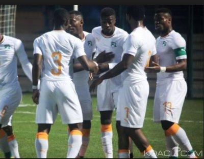 Côte d'Ivoire : CAN 2019, les éléphants connaîtront leurs adversaires le 12 avril prochain