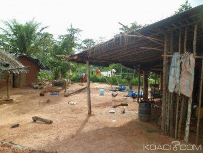 Côte d'Ivoire : Forêt classée, un occupant tente de s'en prendre à un agent des eaux forêts et est atteint mortellement d'une balle