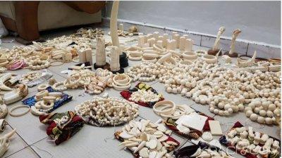 Sénégal : Une commerçante chinoise arrêtée à l'aéroport de Dakar pour trafic d'ivoire