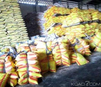 Côte d'Ivoire : Abidjan, 18 mille tonnes de riz Birman déchargés au Port font l'objet de test avant leur consommation