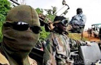 Niger  : Huit civils dont une femme  tués par des combattants de Boko Haram à Diffa