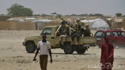 Niger : 14 morts dans une série d'attaques de Boko Haram dans le sud-est