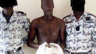 Côte d'Ivoire : À Toumodi, Kpango, chef d'un réseau de trafic de drogue se disant « protégé d'un Haut placé », appréhendé