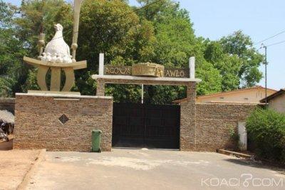 Côte d'Ivoire : Nanan Kassi Anvo  intronisé Roi du peuple Baoulé dans la cour royale