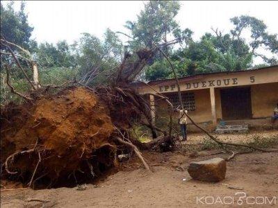 Côte d'Ivoire : Duékoué, une tornade fait de nombreux dégà¢ts, le maire demande de l'aide au gouvernement pour la mise en état des locaux administratifs
