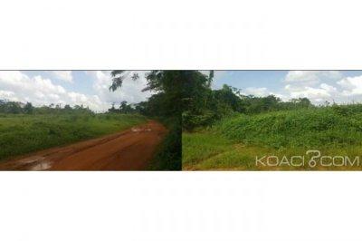 Côte d'Ivoire: Oglwapo, accusé par des villageois de vente illicite de terrains, le sous-préfet reçoit le soutien d'un collectif de jeunes qui dément les allégations avancées