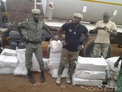 Sénégal : Plus d'une tonne de chanvre indien saisie en deux jours dans Sud et l'Est du pays